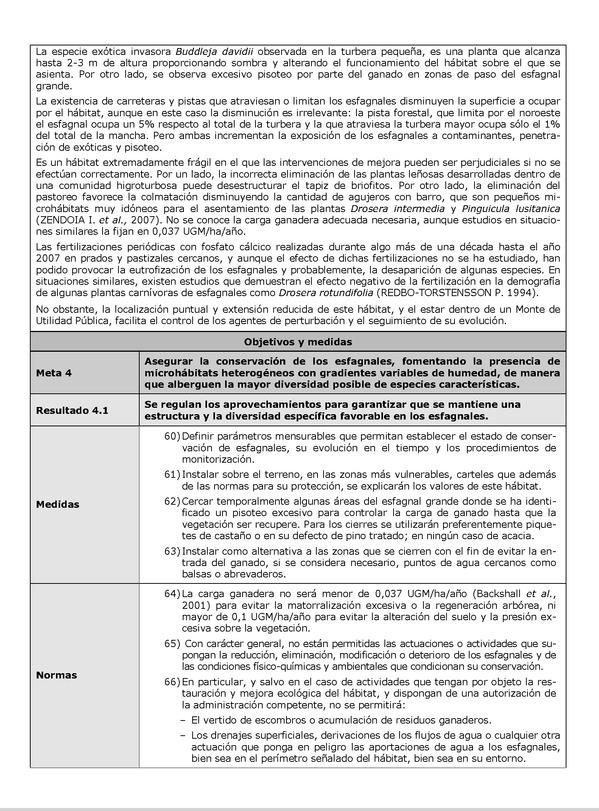 Decreto 355 2013 De 4 De Junio Por El Que Se Designa La