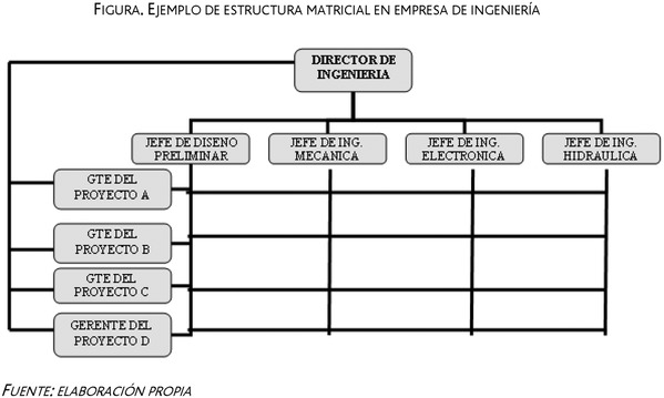 Estructura Organizativa Matricial
